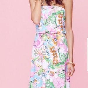 827e3537f9fe Lilly Pulitzer. Lily Pulitzer for Target Maxi Dress XS